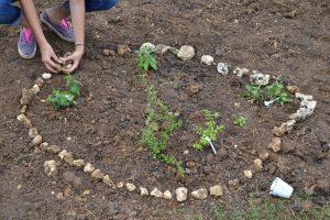 Les traditionnelles matinées de jardinage au collège.